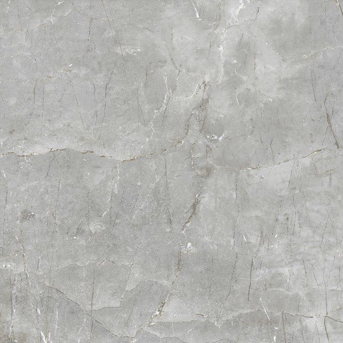 Digital Glazed Vitrified Tiles | 1000x1000 MM | Glossy Finish |